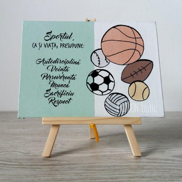 Placuta sport personalizata cu mesaj handmade pictata manual